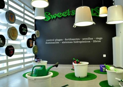 Reforma integral Sweet Seeds